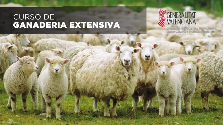 Curso de ganadería extensiva y escuela de pastores