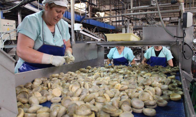 Ayudas Leader para pequeñas industrias agroalimentarias en zonas rurales