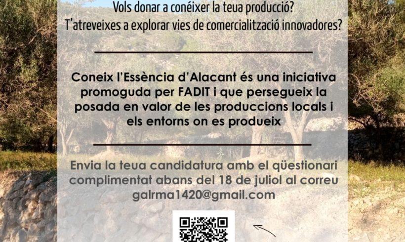 """Abierta la convocatoria de selección de candidaturas a """"Conoce la esencia de Alicante"""""""